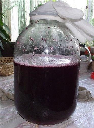 На поверхности домашнего вина появилась плесень