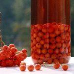 Настойка на коньяке в домашних условиях: рецепты приготовления