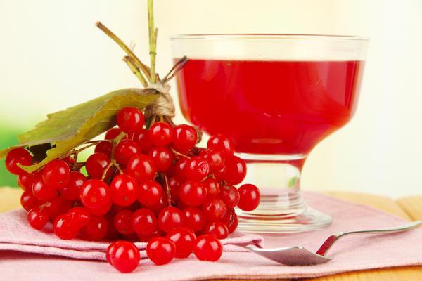 Настойка из калины на водке, на спирту: рецепты, полезные свойства