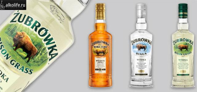 Настойка зубровка: рецепты изумительного и ароматного напитка