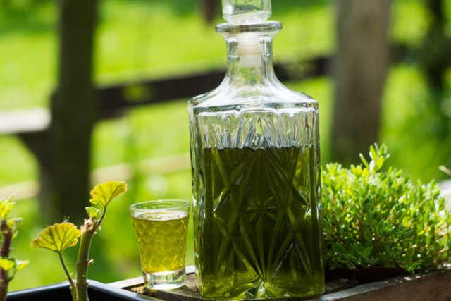 Настойка крапивы на водке: чудесное средство от многих недугов