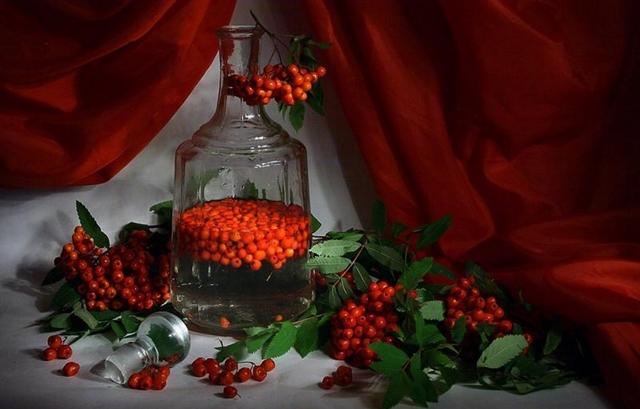 Настойка из рябины в домашних условиях: проверенные рецепты