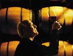 Бочка для вина и другого домашнего алкоголя: как правильно выбрать