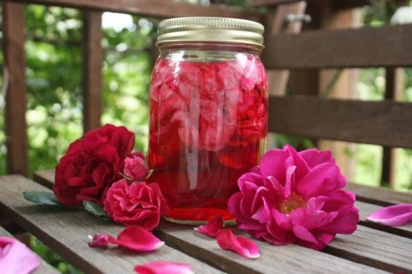Настойка из лепестков роз на водке: простой и доступный рецепт