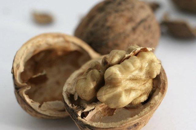 Перегородки грецких орехов: лечебные свойства настойки