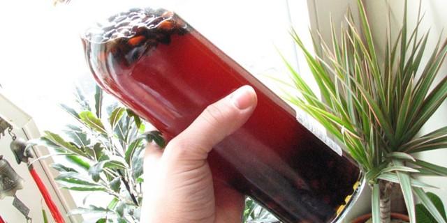 Наливка из черной смородины и красной смородины, настойки