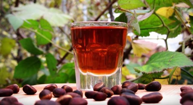 Настойка на кедровых орешках лечебные свойства и как сделать