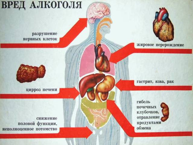 Алкогольная детоксикация может производится в домашних условиях