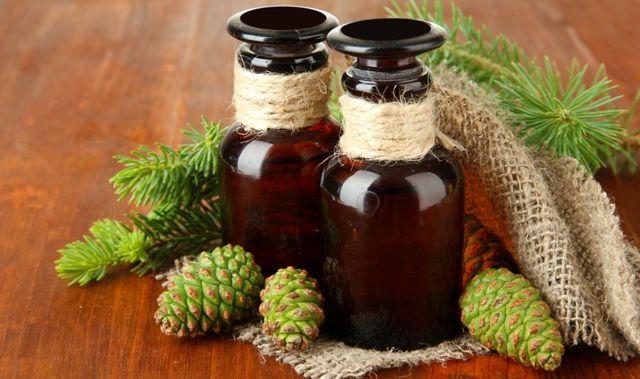 Сосновые шишки настойка на водке лечебные свойства, рецепты