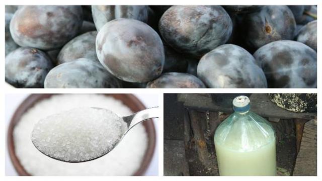 Самогон из сливы: рецепты приготовления в домашних условиях