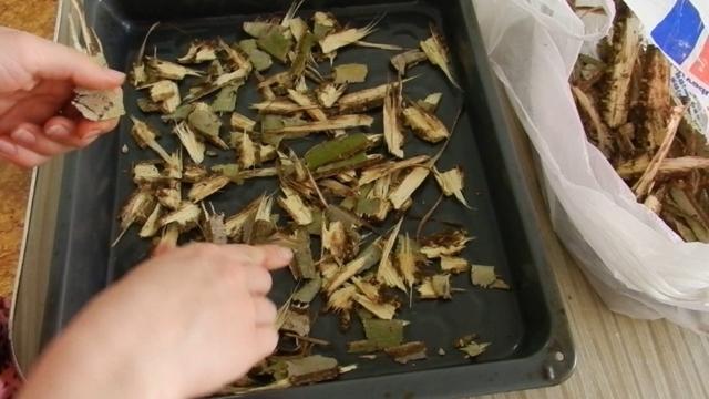Настойка коры осины на водке: назначение и рецепты приготовления