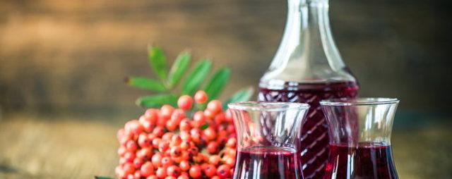 Вино из рябины в домашних условиях: рецепты приготовления