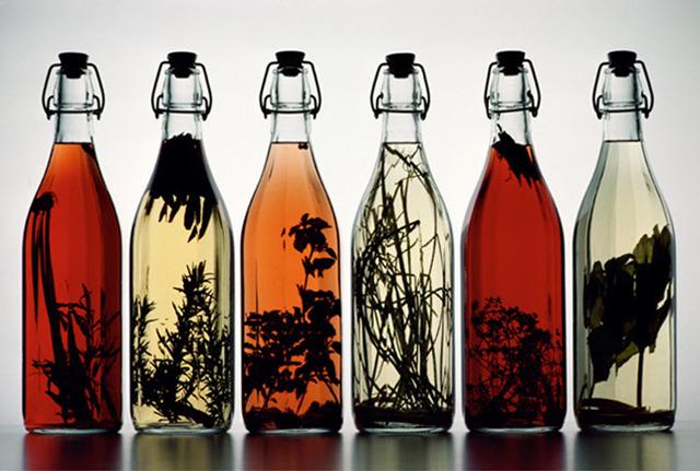 Настойка из девясила на водке: полезные свойства, простые рецепты