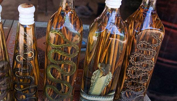 Водка со змеей из Китая: особенности и лечебные свойства