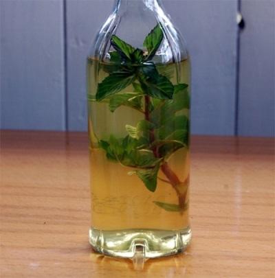 Настойка мяты перечной на спирту, водке, самогоне