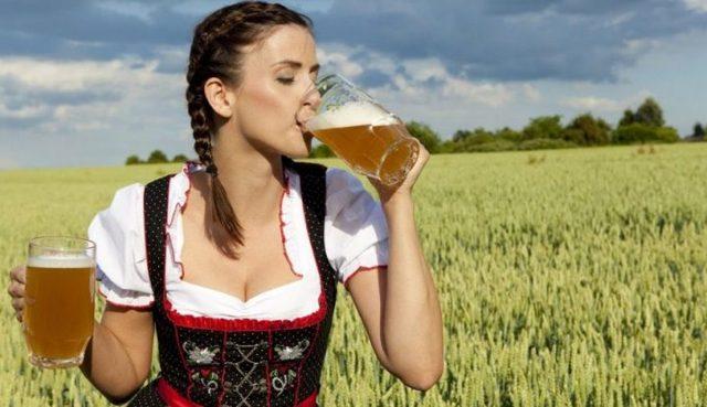 Рецепты чешского пива для домашнего приготовления