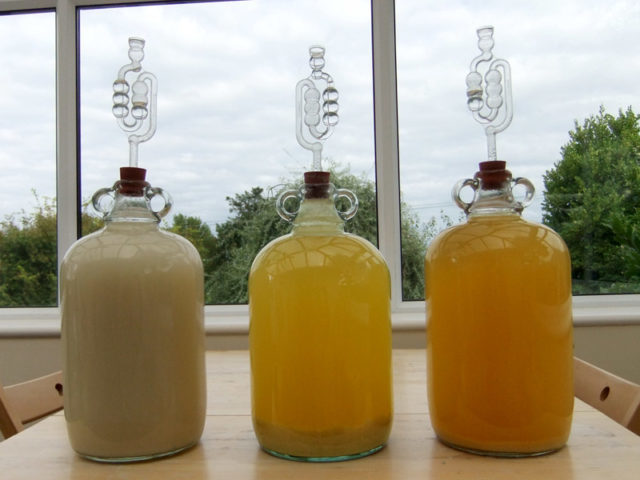 Оптимальное количество дрожжей для браги: спиртовые и турбо