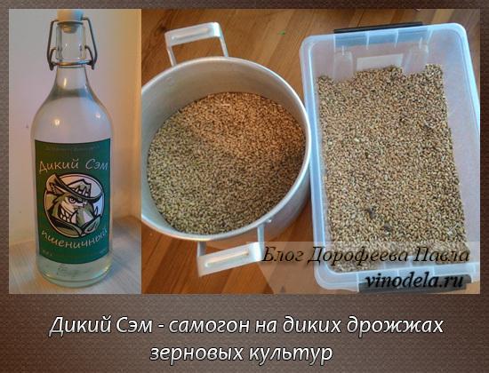 Как приготовить самогон из овса: несколько рецептов на выбор