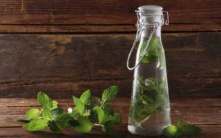 Настойка мелиссы на водке: простые рецепты и назначение