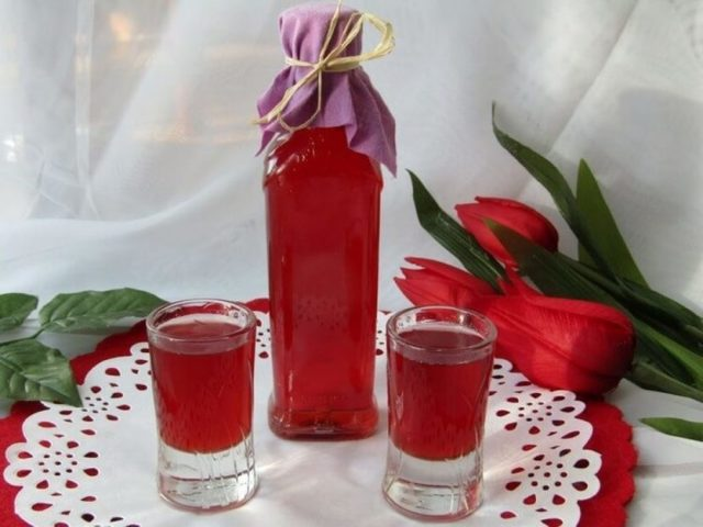 Наливка клюквенная на водке: делаем дома вкусный напиток
