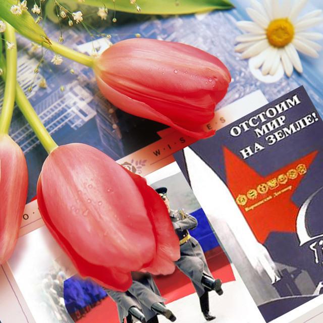 Поздравления с Днем защитника отечества (23 февраля): сборник из 50-ти лучших тостов и поздравлений