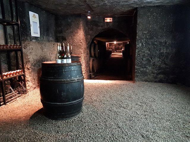 Белое бургундское вино и другие знаменитые вина Франции