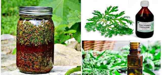 Настойка из полыни на водке: рецепты удивительного напитка