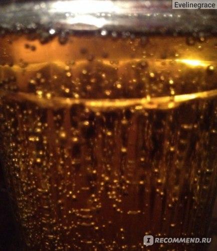 Пиво Жигули Барное: состав, отзывы, производство, характеристики