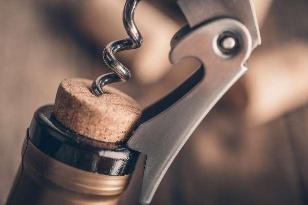 Штопор для вина: обзор моделей, как выбрать самый лучший