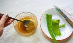 Водка с медом: полезные свойства, рецепты приготовления настоек