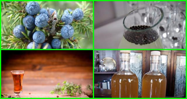 Настойка на можжевеловых ягодах: несколько лучших рецептов