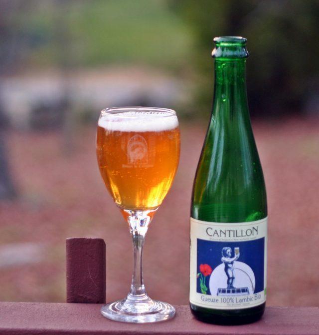 Самое дорогое пиво в мире: обзор существующих марок
