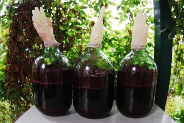 Вино из клюквы: лучшие рецепты приготовления