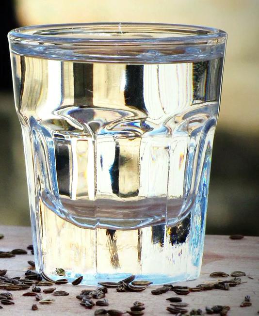 Настойка из тмина на водке: рецепты приготовления напитка