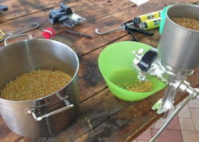 Брага на горохе для самогона рецепт приготовления