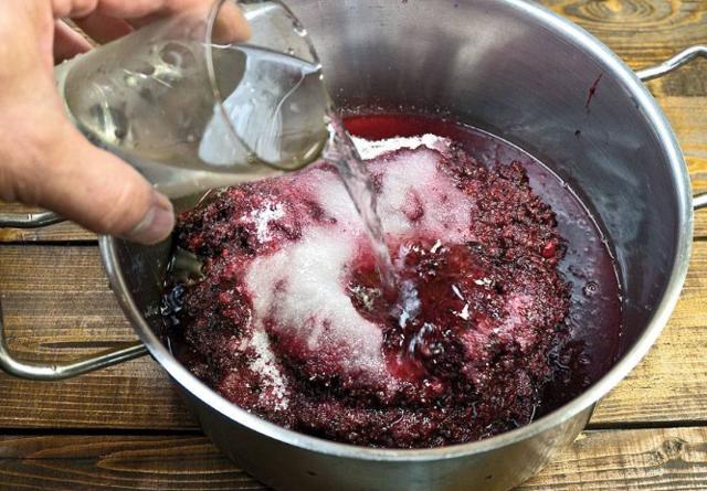 Почему не бродит домашнее вино: пять причин и пути их решения
