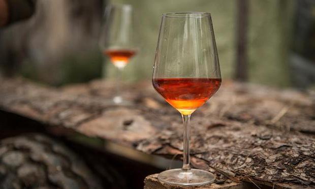 Вино из облепихи: рецепты приготовления в домашних условиях