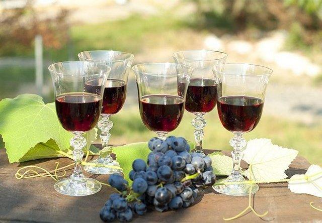 Домашнее вино из винограда: лучший пошаговый рецепт в деталях