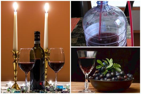 Вино из терна в домашних условиях: рецепты и технология