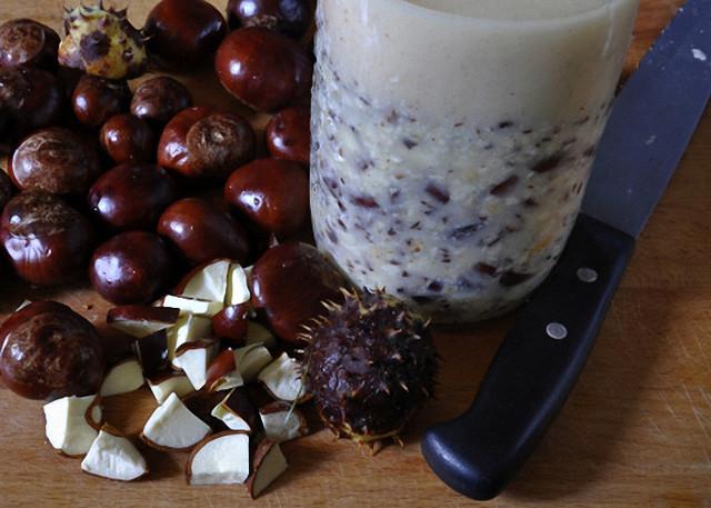 Настойка каштана на водке: простой пошаговый рецепт приготовления