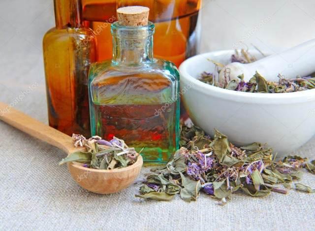 Настойка сабельника на водке: рецепты и нюансы приготовления