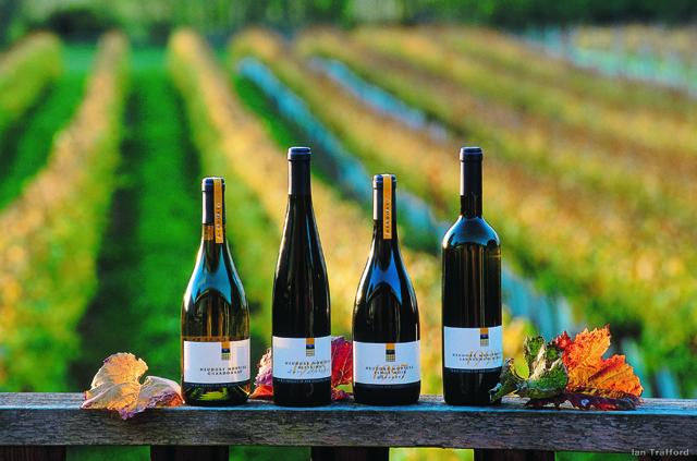 Совиньон Блан Новая Зеландия: сорт винограда и одноименное вино.