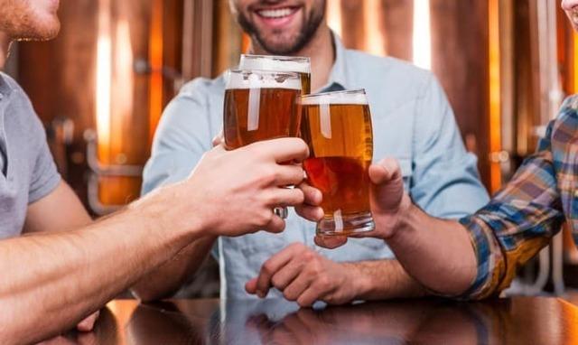 Пиво Жатецкий гусь: обзор, характеристики, отзывы