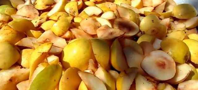 Самогон из груш: рецепты приготовления в домашинх условиях