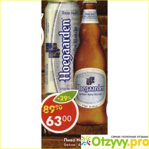Пиво Хугарден грейпфрут: обзор, характеристики, отзывы