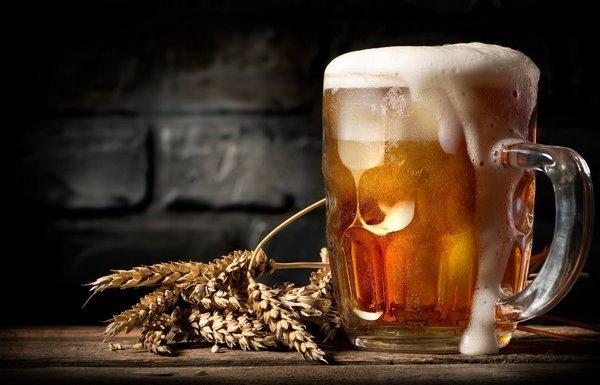 Какая автоматическая домашняя пивоварня лучше?