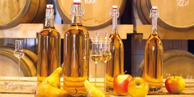 Шнапс что это за напиток: рецепты, правила пития и крепость