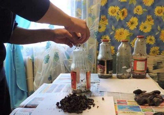 Бобровая струя как приготовить в домашних условиях