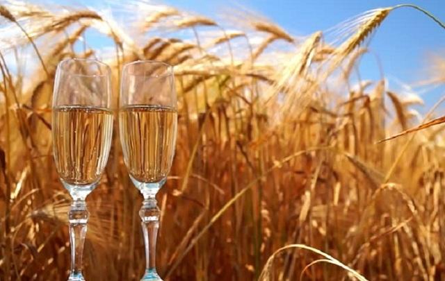 Самогон из пшеницы: рекомендации изготовления, тонкости процесса.